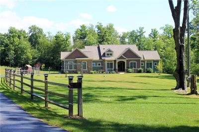 Jamestown NY Single Family Home A-Active: $465,000