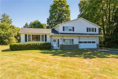 Penfield Single Family Home C-Continue Show: 153 Keyel Dr