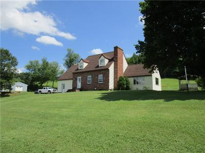 Allegany County, Cattaraugus County Single Family Home A-Active: 4289 Niles Hill Road