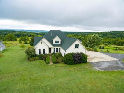 Chautauqua County Single Family Home A-Active: 3766 Dutch Hollow Road
