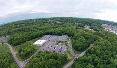 Ellicott NY Commercial A-Active: $6,900,000