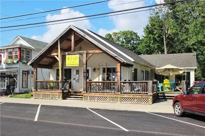 Bemus Point Commercial A-Active: 22 Main Street