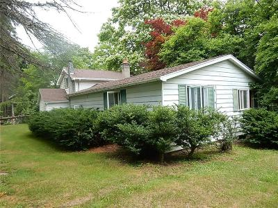 Lyons Single Family Home For Sale: 289 State Route 14