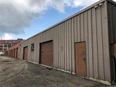 Chautauqua County Commercial A-Active: 1-19 1/2 Blackstone Avenue