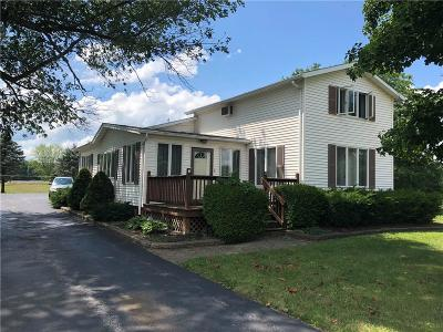 Phelps Single Family Home A-Active: 1650 County Road 43