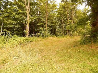 Portland Residential Lots & Land A-Active: 0000 Webster Road Road