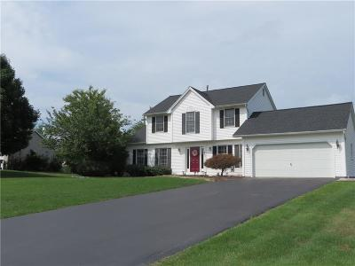 Webster Single Family Home A-Active: 441 Pineville Lane
