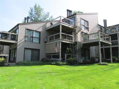 Chautauqua County Condo/Townhouse A-Active: 5301 East Lake Road #23