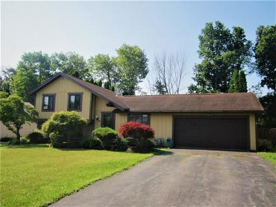 Single Family Home C-Continue Show: 35 Alger Drive