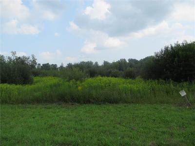 Genesee County Residential Lots & Land A-Active: Perry Road
