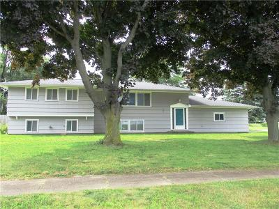 Irondequoit Single Family Home A-Active: 46 Fern Castle Drive