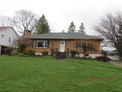 Ontario County Single Family Home A-Active: 348 Castle Street