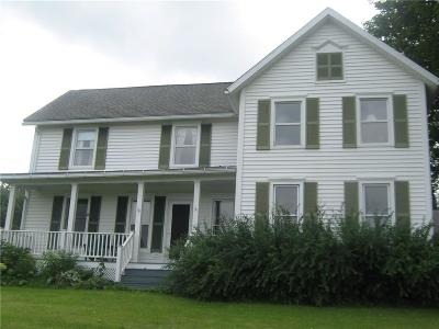 Dansville NY Single Family Home A-Active: $239,000