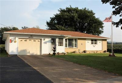 Dunkirk Single Family Home A-Active: 3013 Route 20 Highway