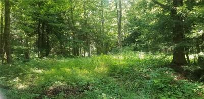 Findley Lake NY Residential Lots & Land A-Active: $52,500