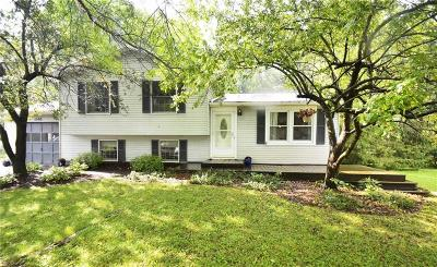 Single Family Home P-Pending Sale: 1592 Sweetbrier Lane