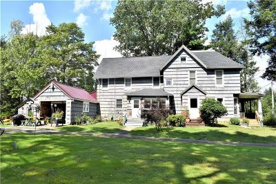 Ellicott NY Single Family Home A-Active: $87,500