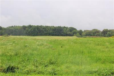 Residential Lots & Land A-Active: 3783 State Route 5 And 20