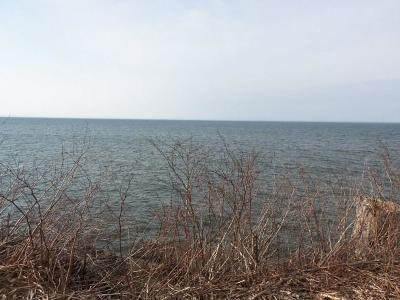 Residential Lots & Land A-Active: 14472 Lakeshore Road