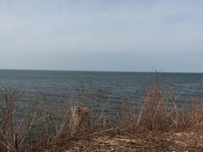 Orleans County Residential Lots & Land A-Active: 14476 Lakeshore Road