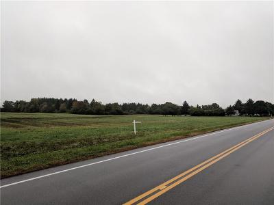 Residential Lots & Land A-Active: Thomas Road