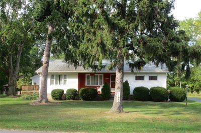 Orleans County Single Family Home A-Active: 11081 Roosevelt Highway