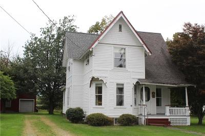 Ripley NY Single Family Home A-Active: $69,900