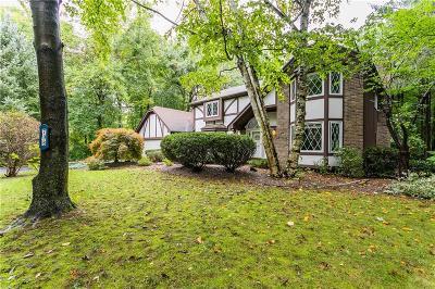 Monroe County Single Family Home A-Active: 796 Blue Creek Drive