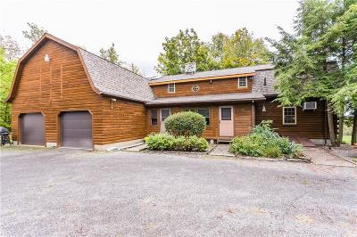 Macedon Single Family Home A-Active: 3130 Hance Road