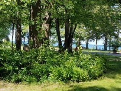 Chautauqua County Residential Lots & Land A-Active: 5 Beach Place