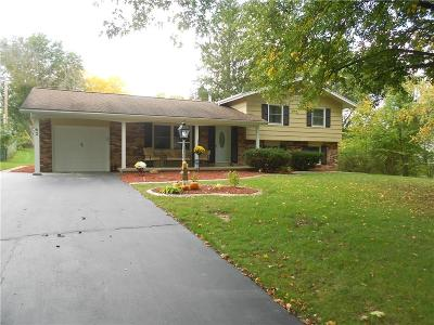Rochester Single Family Home A-Active: 62 Red Bud Road