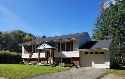 Jamestown NY Single Family Home C-Continue Show: $89,900