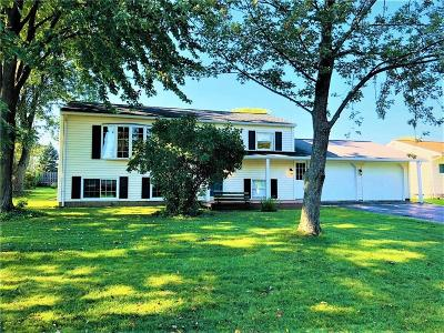 Rochester Single Family Home A-Active: 45 Strawberry Hill Road