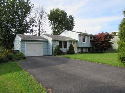 Rochester Single Family Home C-Continue Show: 231 Vollmer Parkway