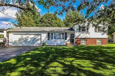 Rochester Single Family Home U-Under Contract: 62 Webber Drive