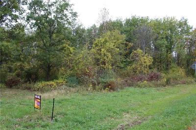 Residential Lots & Land For Sale: Roosevelt Highway