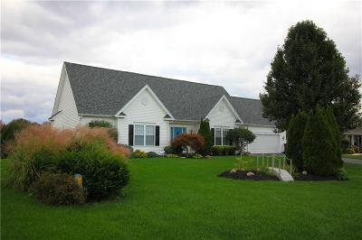 Rochester Single Family Home A-Active: 38 Blue Heron Drive