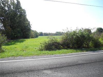 Residential Lots & Land A-Active: Cheese Factory Road
