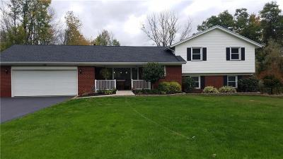 Monroe County Single Family Home U-Under Contract: 3186 Big Ridge Road