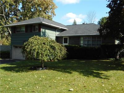 Pittsford Single Family Home A-Active: 148 Bradford Road