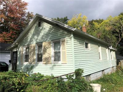 Rochester Single Family Home A-Active: 220 Avenue C