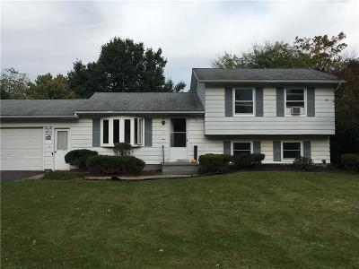 Monroe County Single Family Home A-Active: 11 Diana Drive
