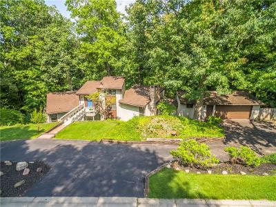 Pittsford Single Family Home A-Active: 23 Hardwood Hill Road