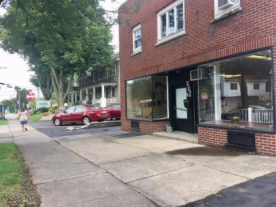 East Rochester Multi Family 2-4 A-Active: 227 West Commercial Street