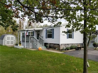 Orleans County Single Family Home A-Active: 824 Stoneybrook