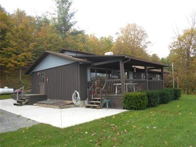 Single Family Home A-Active: 8368 County Route 87