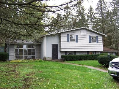 Orleans County Single Family Home A-Active: 10874 Ryan Road