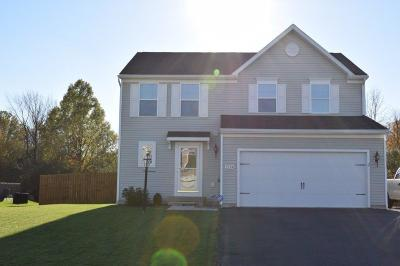 Canandaigua, Canandaigua-city, Canandaigua-town Single Family Home A-Active: 5194 Overlook Lane