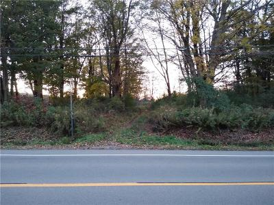 Residential Lots & Land A-Active: 4297 Sherman Mayville Road