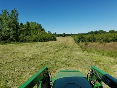 Cayuga County, Monroe County, Ontario County, Seneca County, Yates County Residential Lots & Land A-Active: 892 Burritt Rd